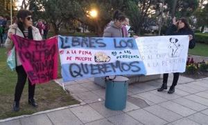 Proteccionistas volvieron a las calles para oponerse a la colocación de chips a los perros