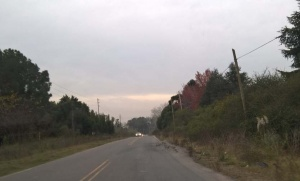 Problemas de seguridad vial en la Ruta 34