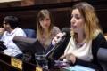 Presentan proyecto de acceso a la interrupción legal del embarazo